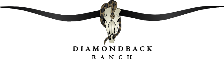 Diamondback Ranch logo